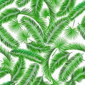 Tropické palmy strom seampless vzor — Stock vektor