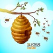 Honey bees and hive on tree branch background — Stock Vector #41896629