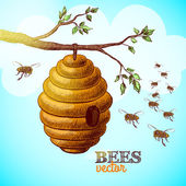 Honey bees and hive on tree branch background — Stock Vector