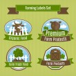Farming harvesting and agriculture badges — Stock Vector #42745325