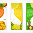 Tropical fruits vertical banner set — Stock Vector