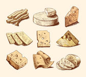 Cheese sketch collection — Stock Vector