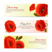 Poppy horizontal banner set — Stock Vector
