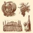 Wine sketch decorative set — Stock Vector #45392013