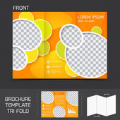 Brochure template tri fold — Stock Vector