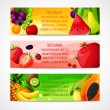 Fruits banners horizontal — Stock Vector #45856771
