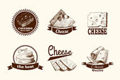Cheese sketch labels — Stock Vector