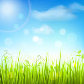 Spring meadow grass blue sky poster — Vecteur
