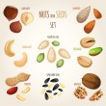 Nut mix set — Stock Vector