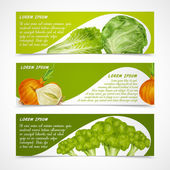 Vegetables banners horizontal — Cтоковый вектор