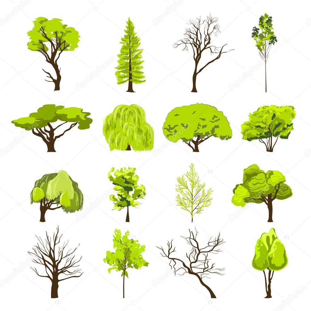 Dibujo de conjunto de iconos de rbol vector de stock for Arboles altos para jardin