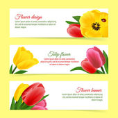 Tulip banner set — Stock Vector