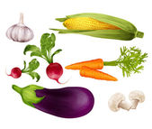 Vegetables realistic set — Vector de stock