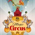 Circus retro poster — Stock Vector #50266195