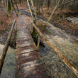 Stock Photo: Bridge over torrent