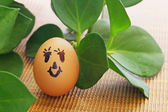 Egg and plant — Stock Photo