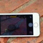 Mobile phone — Stock Photo #49627819