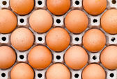 Chicken egg food carton package background — Stock Photo