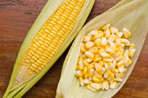 Ear of Corn and corn seed — Stock Photo