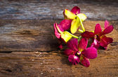 Orchid flower on wood table — Photo
