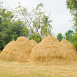 Haystack — Stock Photo #37816043