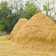 Haystack — Stock Photo #37816383