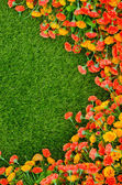 Artificial Grass Field and Flowers — Stock Photo