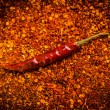 Stock Photo: Dried chili