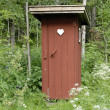 Outhouse — Stock Photo #37779201
