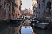 İtalya vitrin Portreler — Stok fotoğraf