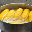 Corn boiling in pot — Stock Photo