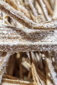 Close up photo of frosty morning grass, on leaf — Stock Photo