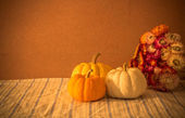 Still Life Tiny pumpkins and dry flower on table — Stock Photo