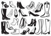 Dessinés à la main chaussures — Vecteur