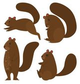 Squirrel icon set on white background — Stock Vector