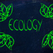 Ecology and the green economy — Stock Photo
