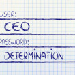 Stock Photo: User CEO, password Determination