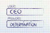 User CEO, password Determination — Stock Photo