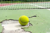 Tennis Ball On The White Line court — Stock Photo