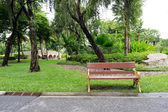 Green garden view and Walkway in park — Stock Photo