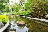 Backyard Pond landscape — Stock Photo
