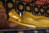 Budha Statue in Wat Chedi Lung — Stock Photo