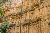 Phachor in Doi Lo Chiangmai , Grand Canyon National Park — Stock Photo