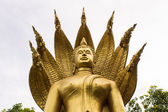 Golden Nacprk Buddha statue of Thai temples — Foto Stock