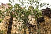 Kew Sue Ten in Doi Lo Chiangmai , Grand Canyon National Park — Стоковое фото