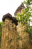 Kew Sue Ten in Doi Lo Chiangmai , Grand Canyon National Park — Stock Photo
