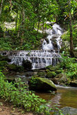 Maekampong Waterfall In Chiangmai — Stock Photo