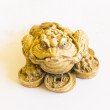 Golden frog with coins — Stock Photo