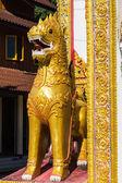 The statue of Shan style singha in Wat tiya sathan thaiyai — Stok fotoğraf