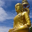 Side of biggest image of buddha In wat Phrataddoitae — Stock Photo